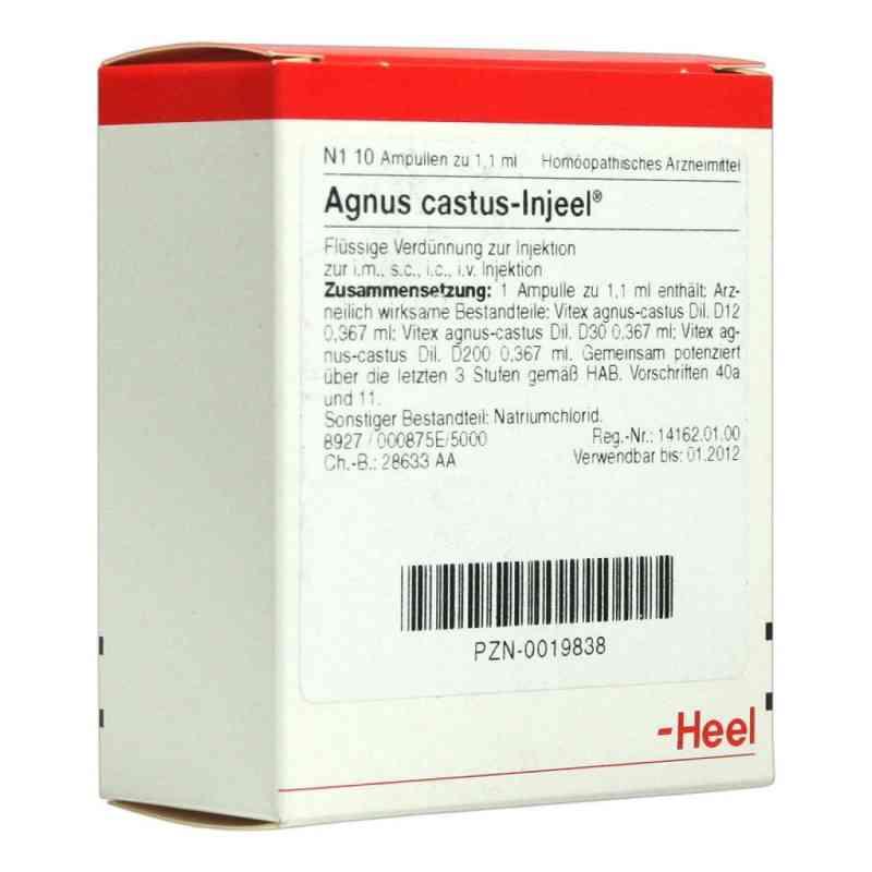 Agnus Castus Injeel Ampullen  bei apo.com bestellen