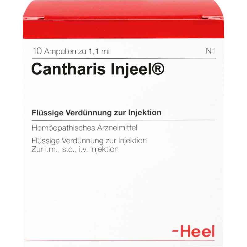 Cantharis Injeel Ampullen  bei apo.com bestellen