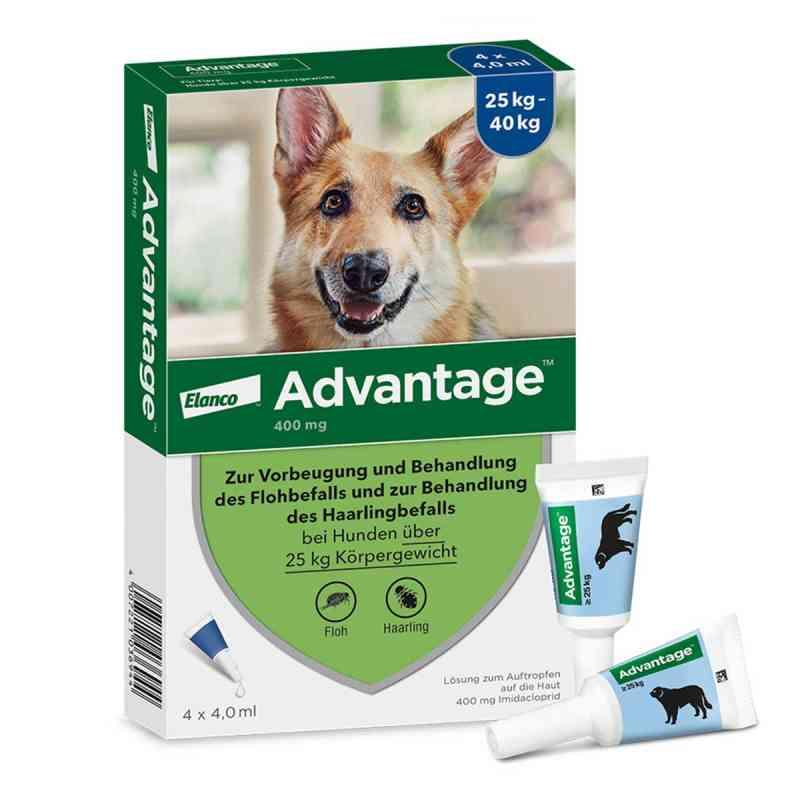 Advantage 400 für Hunde Lösung  bei apo.com bestellen