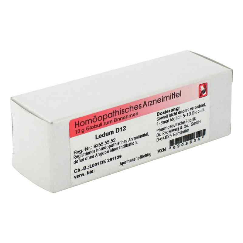 Ledum D 12 Globuli  bei apo.com bestellen