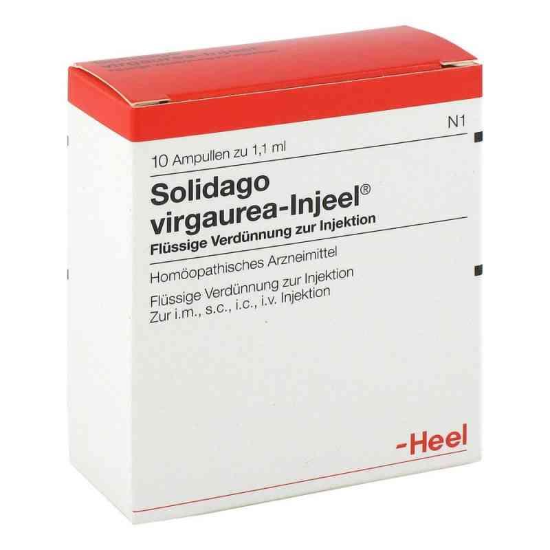 Solidago Virgaurea Injeel Ampullen  bei apo.com bestellen