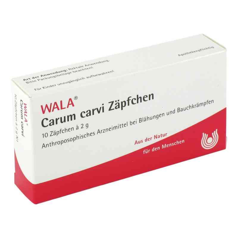 Carum Carvi Zäpfchen  bei apo.com bestellen