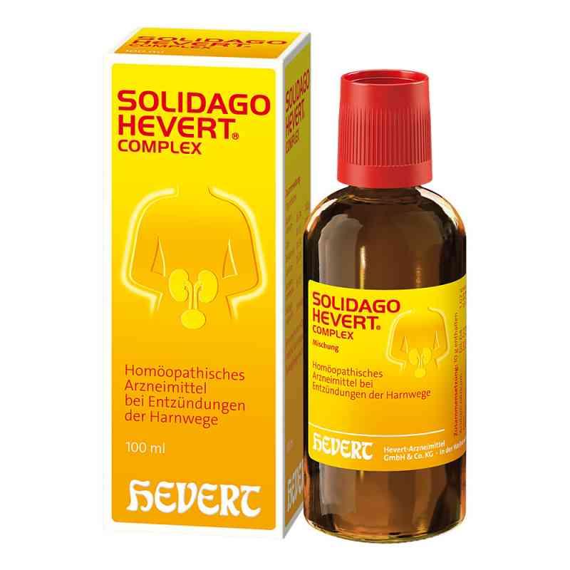 Solidago Hevert Complex Tropfen  bei apo.com bestellen