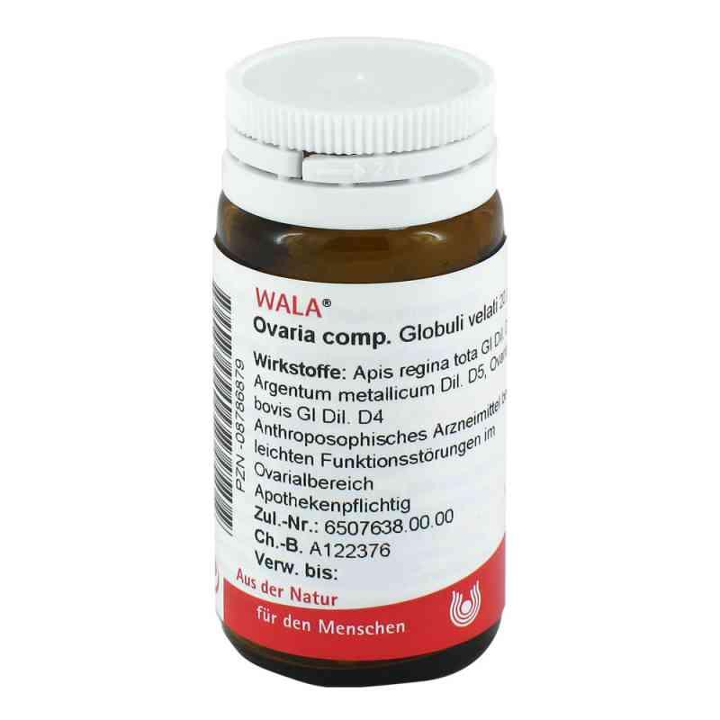 Ovaria Comp. Globuli  bei apo.com bestellen