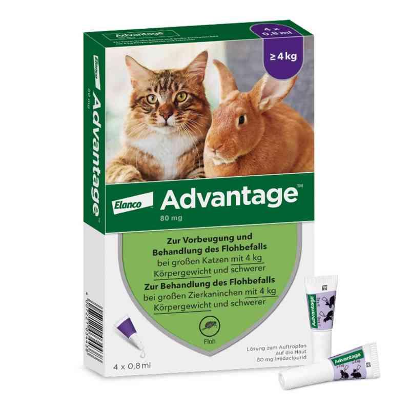 Advantage 80 mg für gr.Katzen und gr.Zierkaninchen  bei apo.com bestellen