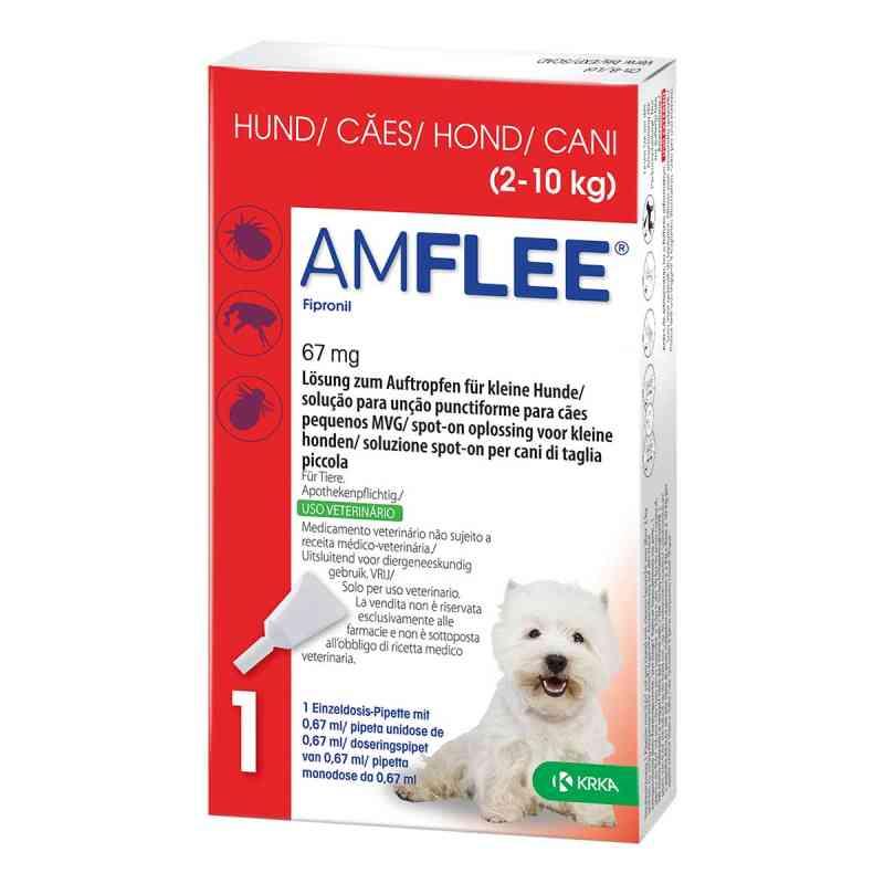 Amflee 67 mg Lösung zum Auftropfen für kleine Hunde  bei apo.com bestellen