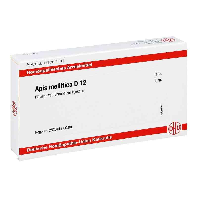 Apis Mellifica D 12 Ampullen  bei apo.com bestellen