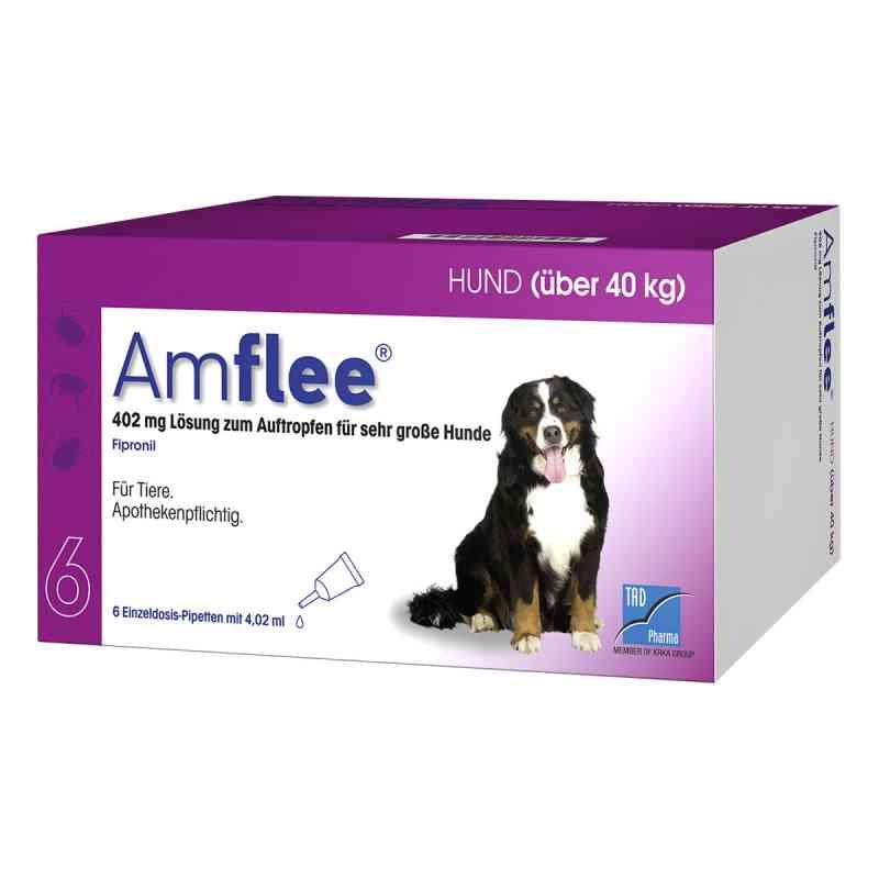 Amflee 402 mg Spot-on Lösung für sehr gr.Hunde 40-60kg  bei apo.com bestellen