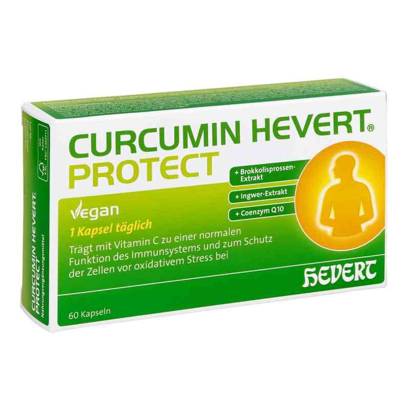 Curcumin Hevert Protect Kapseln  bei apo.com bestellen