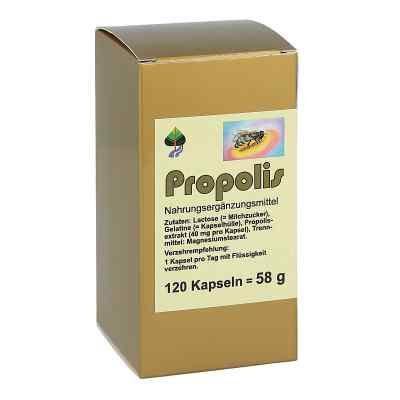 Propolis Kapseln  bei apo.com bestellen