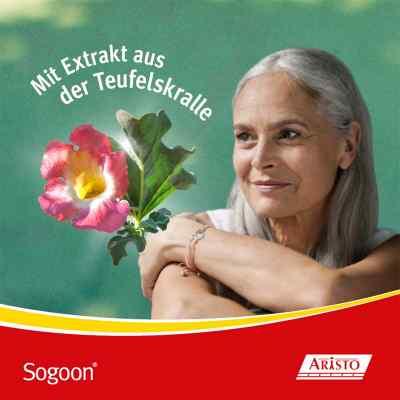 Sogoon - mit Teufelskralle  bei apo.com bestellen