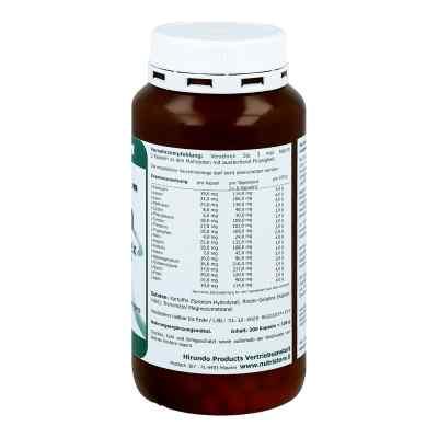 Aminosäure Spezial Komplex Kapseln  bei apo.com bestellen