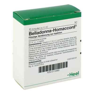 Belladonna Homaccord Ampullen  bei apo.com bestellen