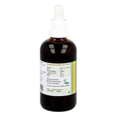 Koriander Extrakt Bio 23% V/v  bei apo.com bestellen
