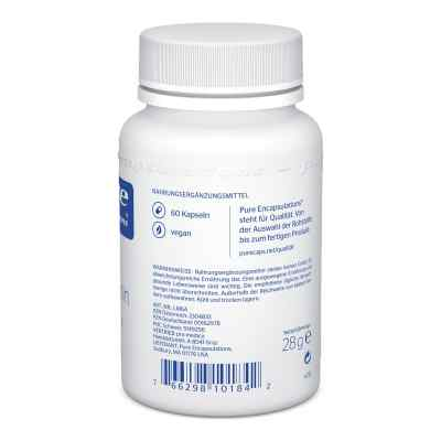 Pure Encapsulations L-methionin Kapseln  bei apo.com bestellen