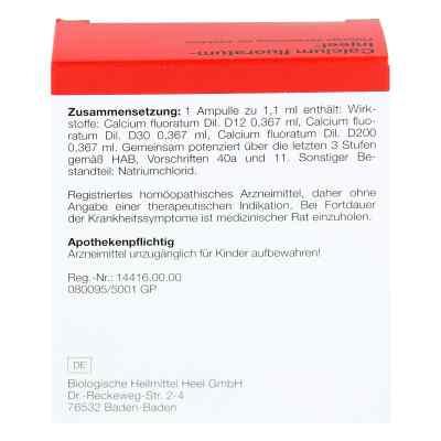 Calcium Fluoratum Injeel Ampullen  bei apo.com bestellen