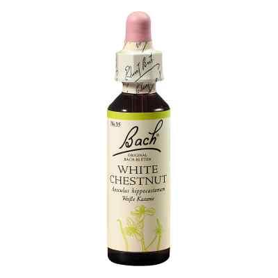 Bachblüten White Chestnut Tropfen  bei apo.com bestellen