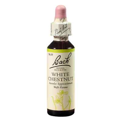 Bachblüten White Chestnut Tropfen  bei apotheke-online.de bestellen
