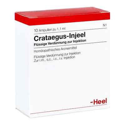 Crataegus Injeel Ampullen  bei apo.com bestellen