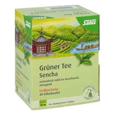 Grüner Tee bio Salus Filterbeutel Grosspackung  bei apo.com bestellen