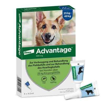 Advantage 400 für Hunde Lösung  bei apotheke-online.de bestellen