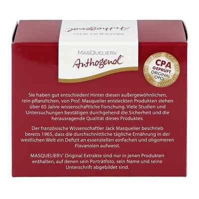 Opc Original Masqueliers Anthogenol Kapseln  bei apo.com bestellen