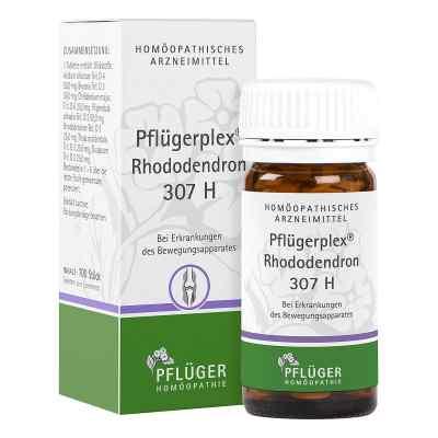 Pflügerplex Rhododendron 307 H Tabletten  bei apo.com bestellen