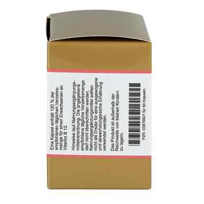 Vitamin B12 Kapseln  bei apo.com bestellen