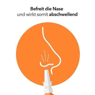 NasenSpray-ratiopharm Erwachsene  bei apotheke-online.de bestellen