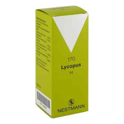 Lycopus H Nummer  170 Tropfen  bei apo.com bestellen