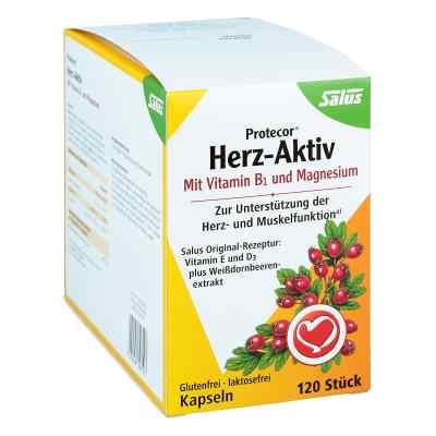Protecor Herz-aktiv Kapseln  bei apo.com bestellen