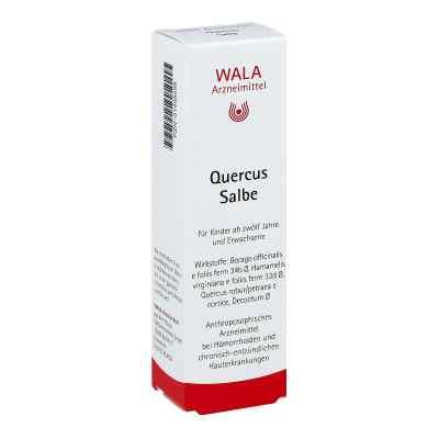 Quercus Salbe  bei apo.com bestellen