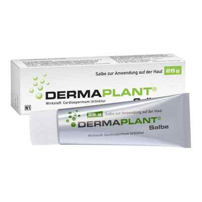 Dermaplant Salbe  bei apo.com bestellen