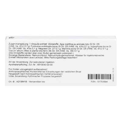 Magnesit/ Mamma Comp. Ampullen  bei apo.com bestellen