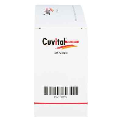 Cuvital Alpha Lipon Kapseln  bei apo.com bestellen