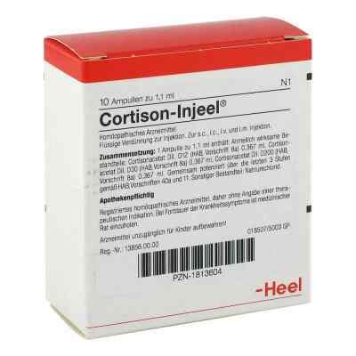 Cortison Injeel Ampullen  bei apo.com bestellen