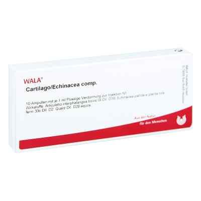 Cartilago/echinacea compositus Ampullen  bei apo.com bestellen