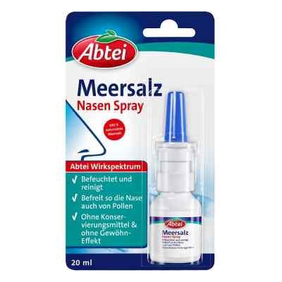 Abtei Meersalz Nasenspray standard  bei apo.com bestellen