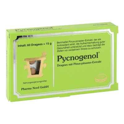 Pycnogenol Kiefernrindenextrakt Dragees  bei apo.com bestellen