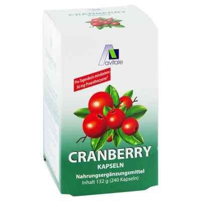 Cranberry Kapseln 400 mg  bei vitaapotheke.eu bestellen