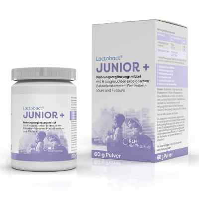 Lactobact Junior Pulver  bei vitaapotheke.eu bestellen