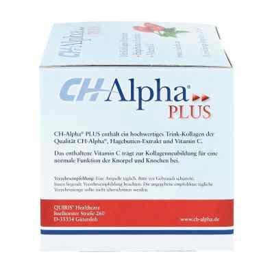Alpha Pille Erfahrungen