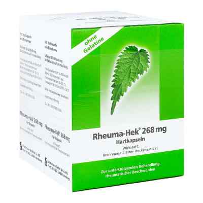 Rheuma-Hek 268mg  bei apo.com bestellen