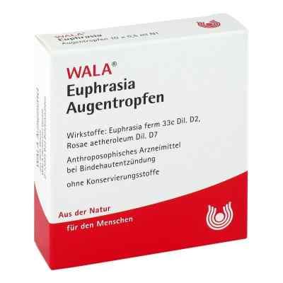 Euphrasia Augentropfen  bei apotheke-online.de bestellen