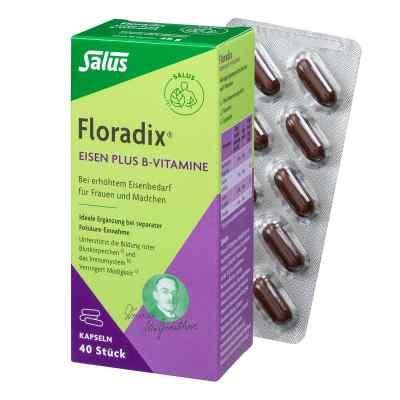 Floradix Eisen plus B Vitamine Kapseln  bei vitaapotheke.eu bestellen