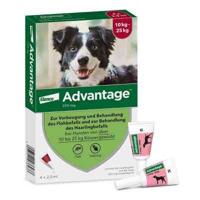 Advantage 250 für Hunde Lösung  bei apotheke-online.de bestellen