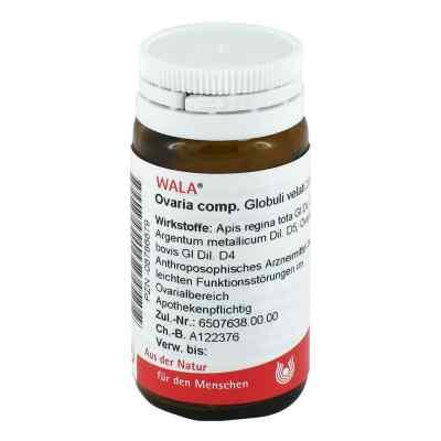 Ovaria Comp. Globuli  bei apotheke-online.de bestellen