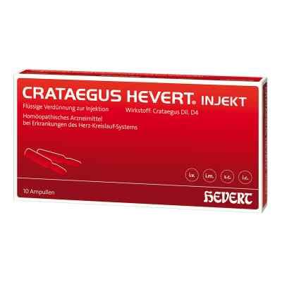Crataegus Hevert injekt Ampullen  bei apo.com bestellen
