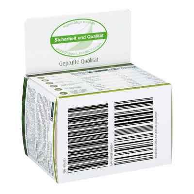 Arginin Plus Folsäure Kapseln  bei vitaapotheke.eu bestellen