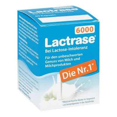 Lactrase 6.000 Fcc Kapseln  bei vitaapotheke.eu bestellen